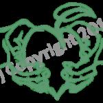 hand heart1